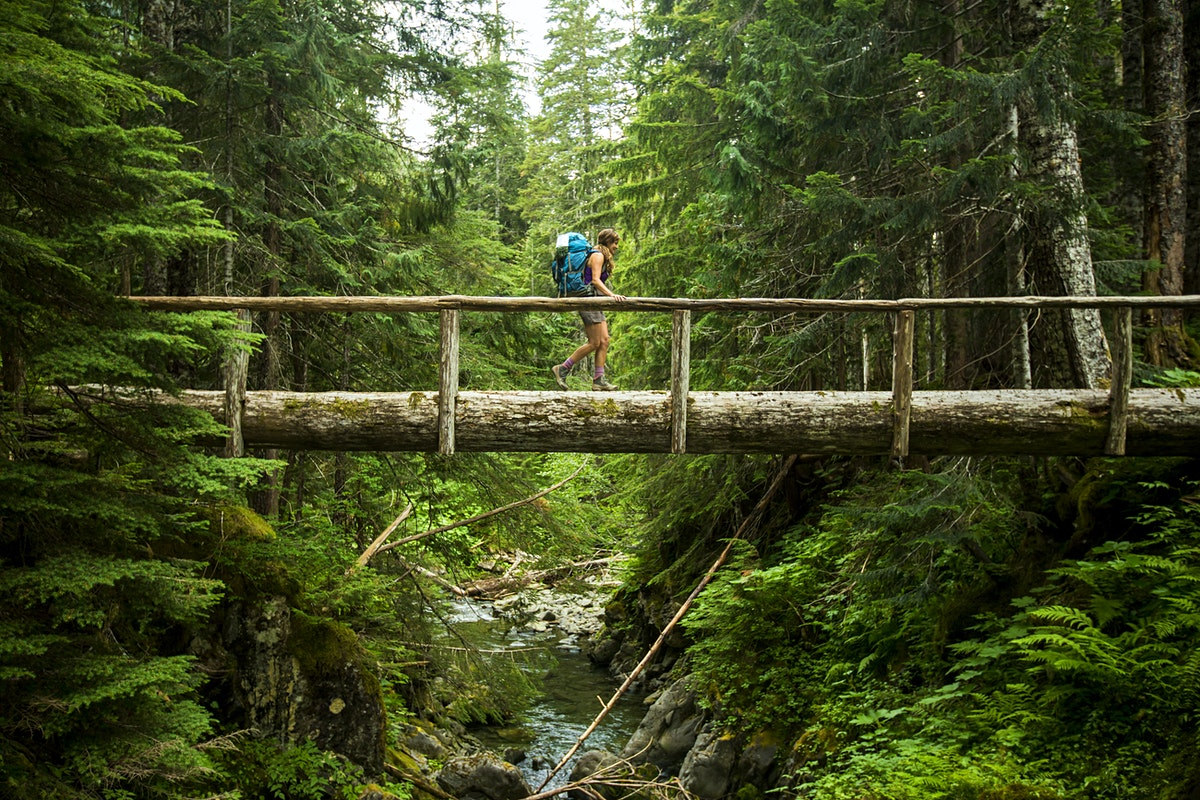 Olympic National Park Travel Usa Lonely Planet