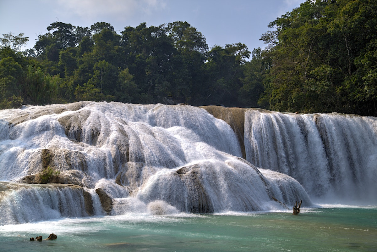 Agua Azul Misol Ha Lonely Planet