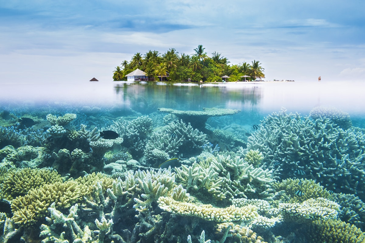 Maldives travel - Lonely Planet on world map seychelles islands, map of maldives and seychelles, south indian ocean islands, map india sri lanka and maldives,