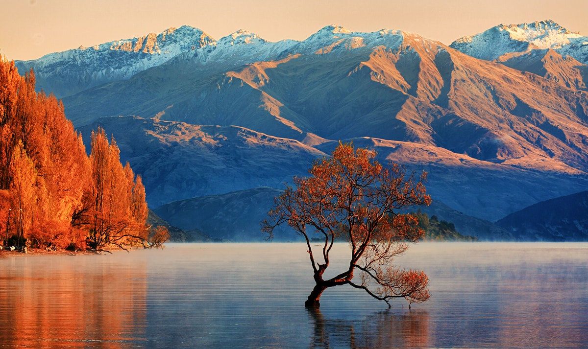 New Zealand Travel Lonely Planet