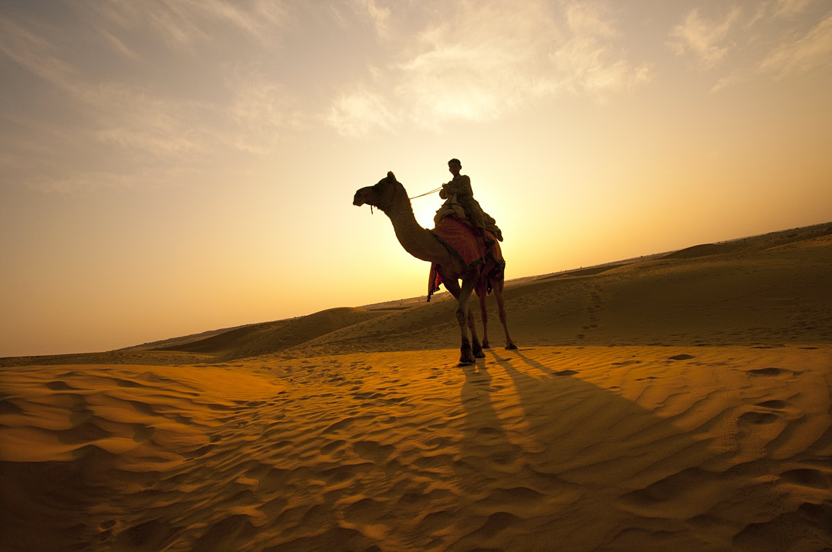 Rajasthan Travel India Lonely Planet